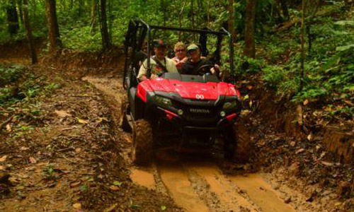 Buggy and ATV tours