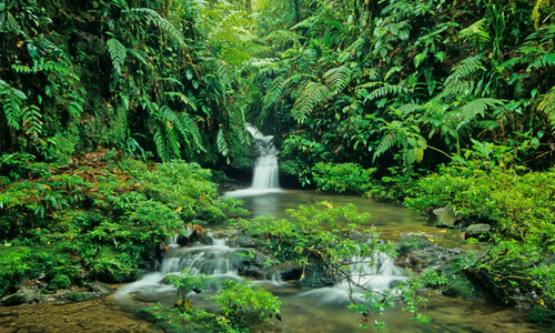 tour the national parks in costa rica